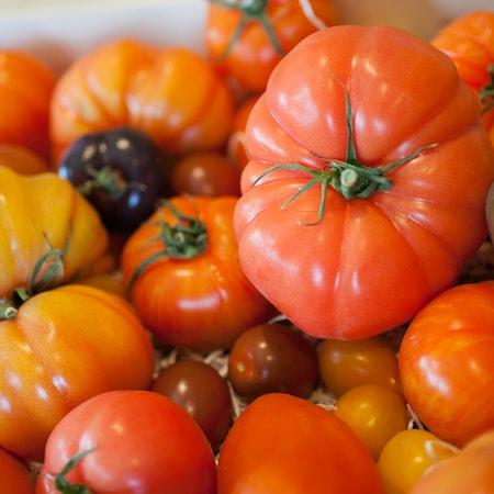 Italian restaurant milton keynes - tomatoes